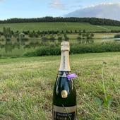 Rien de mieux que la nature ! 🌱🍃  Et notre Brut Blanc de Blancs profite du couché de soleil 🌤  #nature #paysage  #herbe #ciel #couchedesoleil #champagne  #champagnegruet #champagnegruetetfils #champagnelover #brut #blancdeblancs #brutblancdeblancs #chablis