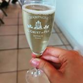 Pour se rafraîchir, dégustez une coupe de Brut Blanc de Blancs champagne G.Gruet et Fils. Et bien sûr n'oubliez pas d'enlever votre masque pour déguster notre champagne🙂😅😂. Faites attention à vous. 🥂. 😷.  #vendange #vendange2020 #champagne #champagnebrutblancdeblancs #blancdeblancs #vignoble #pressurage #raisins #grappes #jus #bulles #champagneardenne #marne #bethon