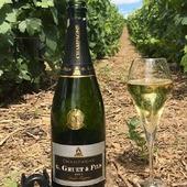 Pour fêter la fin du confinement et le retour à la vie (presque normale 😒) et pour les amateurs des cuvées fruités, nous vous proposons de déguster une flûte de notre champagne Brut Grande Réserve. 🥂  Messager de tradition et de qualité, cette cuvée fruitée d'une grande finesse se distingue par l'harmonie subtile des cépages Pinot Noir et Chardonnay.  À vos flûtes !!! 🥂🍾  ⚠️ A boire avec modération.   #champagne #gruet #champagnegruet #champagnegruetetfils #brut #grandereserve #brutgrandereserve #pinotnoir #chardonnay #vigne #vignes #vine #vignerons #winemaker #vignoble #vineyard #bouteille #bottles #bouchon #medailleor #champagnelover #champagnelovers #champagneardenne #marne #bethon