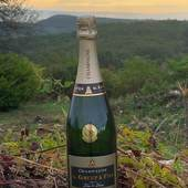 Notre bouteille champagne G.Gruet & Fils prend une bouffé d'air fraiche. 🍾. 🥂.  #champagne #champagnegruet #champagnegruetetfils #brut #blancdeblancs #campagne #pleineair #bulle #vignoble #champagneardenne #marne #bethon