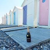 Coquillages et Champagne cet été. 🌞🍾  Suite en images du week-end de 3 jours au Tréport pour notre Brut Blanc de Blancs !  Le Tréport et ses jolies petites cabanes sur la plage aux couleurs pastelles.  On adore et vous ?? 🎨  #champagne #gruet #champagnegruetetfils #brut #blancdeblancs #brutblancdeblancs #vacance #holiday #cabane #couleur #plage #beach #galet #pebble #sable #sand #mer #sea #changementdair #treport #labaiedelasomme #baiedesomme #phoque #champagnelover #champagnelovers