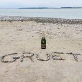 Un tour à la plage, c'est l'été non ? 🌞 🌊   Week-ends de 3 jours au Tréport pour notre Brut Blanc de Blancs.   Nous sommes partis visiter La Baie de Somme ! Derrière notre bouteille de champagne, se cache un beau spectacle, vu sur un troupeau de phoque.   (Malheureusement unpeu loin pour les voirs sur la photo).   Pas de panique, prochain post Instagram, une autre séance photo avec un autre animal qui vie à la mer.   Des idées ? 🐊🐢🐳🐋🐬🐟🐠🐡🦈🐙🐚🐧🐻❄️  #champagne #champagnegruet #champagnegruetetfils #brut #blancdeblancs #brutblancdeblancs #vacance #holiday #plage #beach #galet #pebble #sable #sand #mer #sea #changementdair #treport #labaiedelasomme #baiedesomme #phoque #champagnelover #champagnelovers